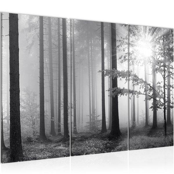 Wald Schwarz Weiß BILD KUNSTDRUCK  - AUF VLIES LEINWAND - XXL DEKORATION  007831P