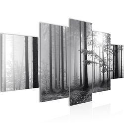 Wald Schwarz Weiß BILD KUNSTDRUCK  - AUF VLIES LEINWAND - XXL DEKORATION  00785P  Bild 2