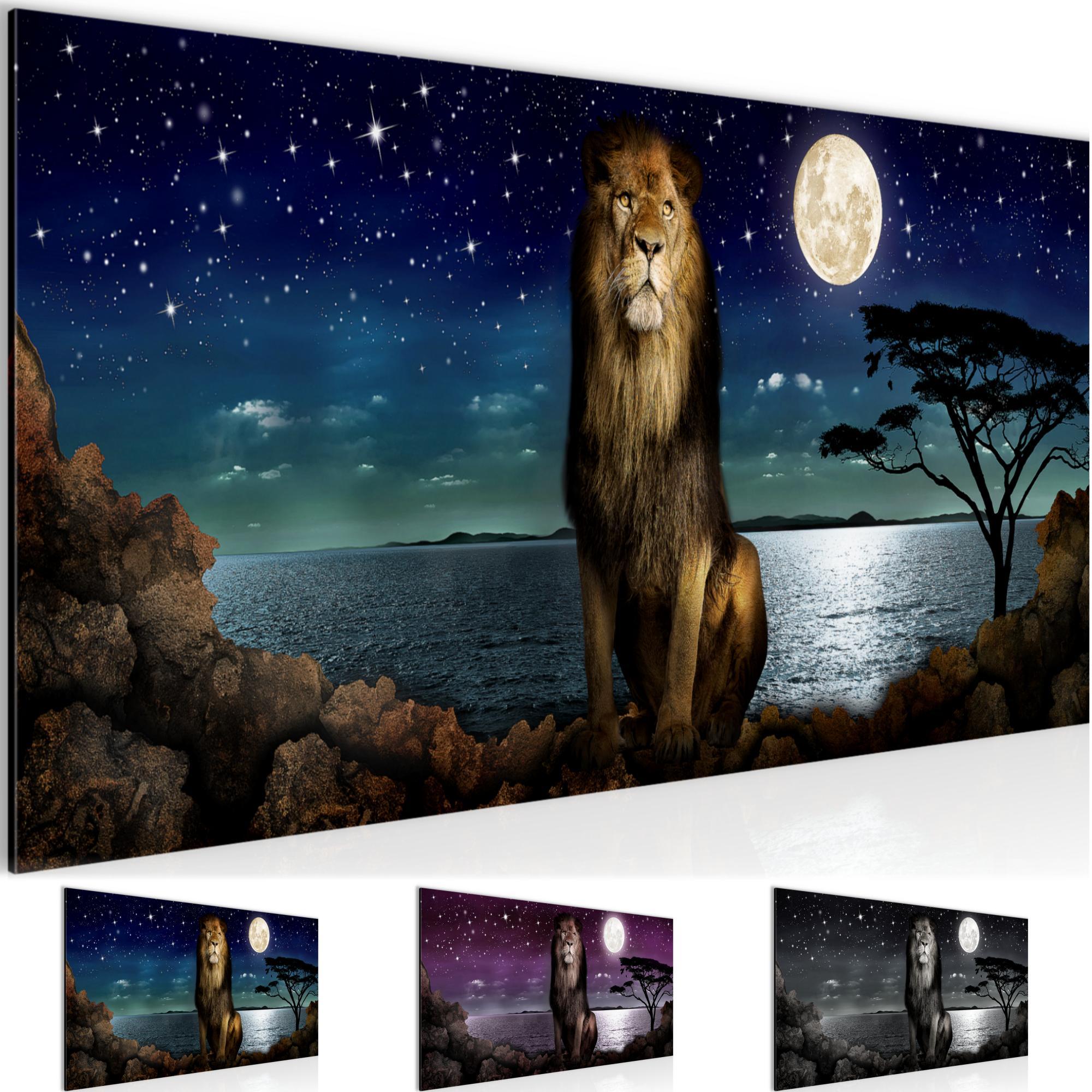 Afrika l we bild kunstdruck auf vlies leinwand xxl dekoration 022912p - Dekoration afrika ...