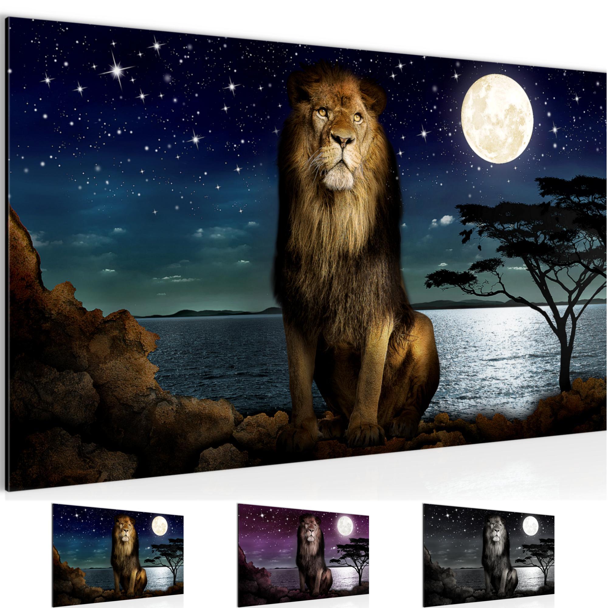 Afrika l we bild kunstdruck auf vlies leinwand xxl dekoration 022914p - Dekoration afrika ...