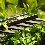 Gartenwerkzeug & Maschinen
