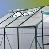 Gewächshaus / Treibhaus Den Haag 7 qm mit 4 Dachfenster