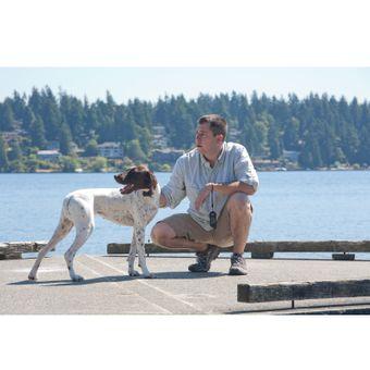 PetSafe Ferntrainer Hundehalsband bis 100 m für große Hunde – Bild $_i