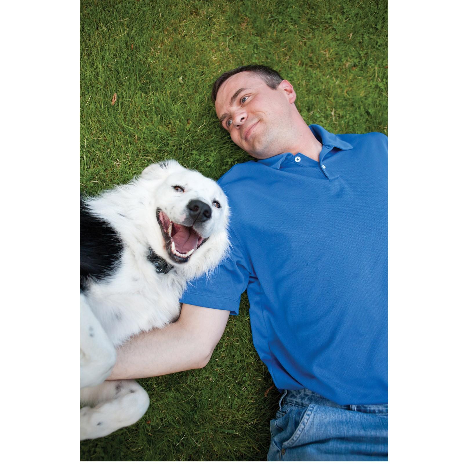 Petsafe Hundezaun Hundehalsband Hunde R 252 Ckhaltesystem