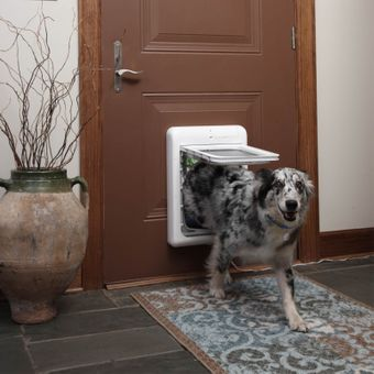 Petsafe Hundetür / Microchip Hundeklappe Staywell Hunde Tür – Bild $_i