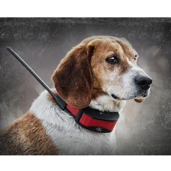 SportDog TEK Series 2.0 Halsband Ferntrainer GPS Hunde System – Bild $_i