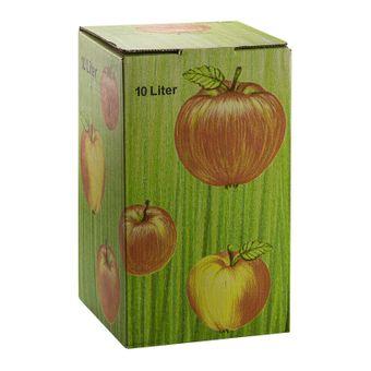 Bag in Box Karton Apfeldekor Schachtel Saftkarton Saftlagerung 10 Liter