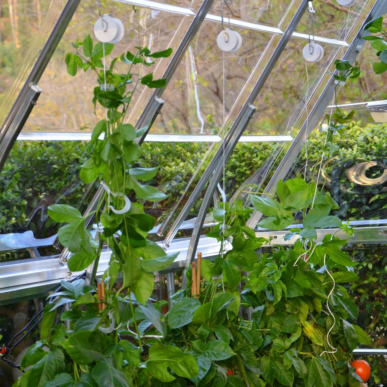 Palram Rankhilfe Tomaten Set Gewachshaus Zubehor