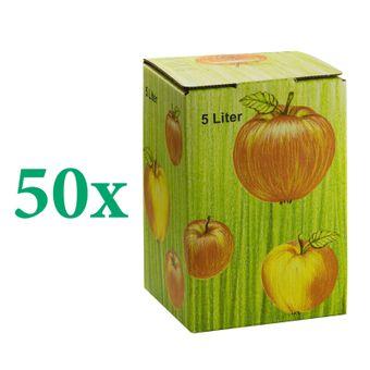 50x Bag in Box Saft-Karton / Faltkarton mit Apfeldekor 5 Liter