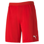 teamFINAL 21 knit Shorts Jr.