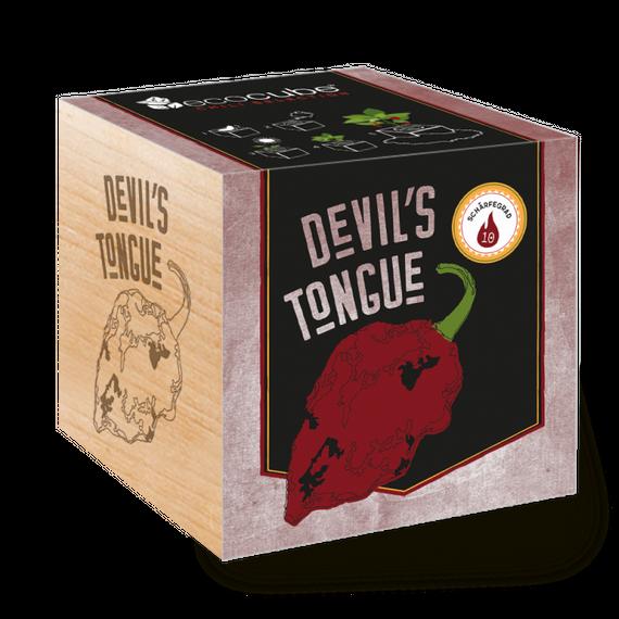 "Chilipflanze ""Devil's Tongue"" im Holzwürfel - Chili Selection - Bild 1"