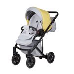ANEX Cross City Buggy  001