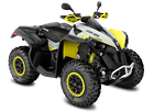 BRP Can-Am Renegade 650 X XC T Modell 2019