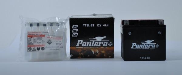 pantera motorrad roller s ure batterie ytx5l bs honda clr. Black Bedroom Furniture Sets. Home Design Ideas