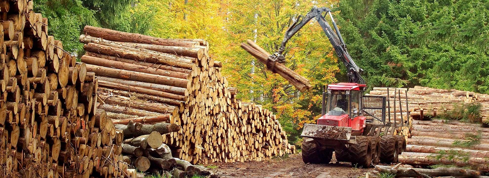 Rückewagen & Krane für die Forstwirtschaft