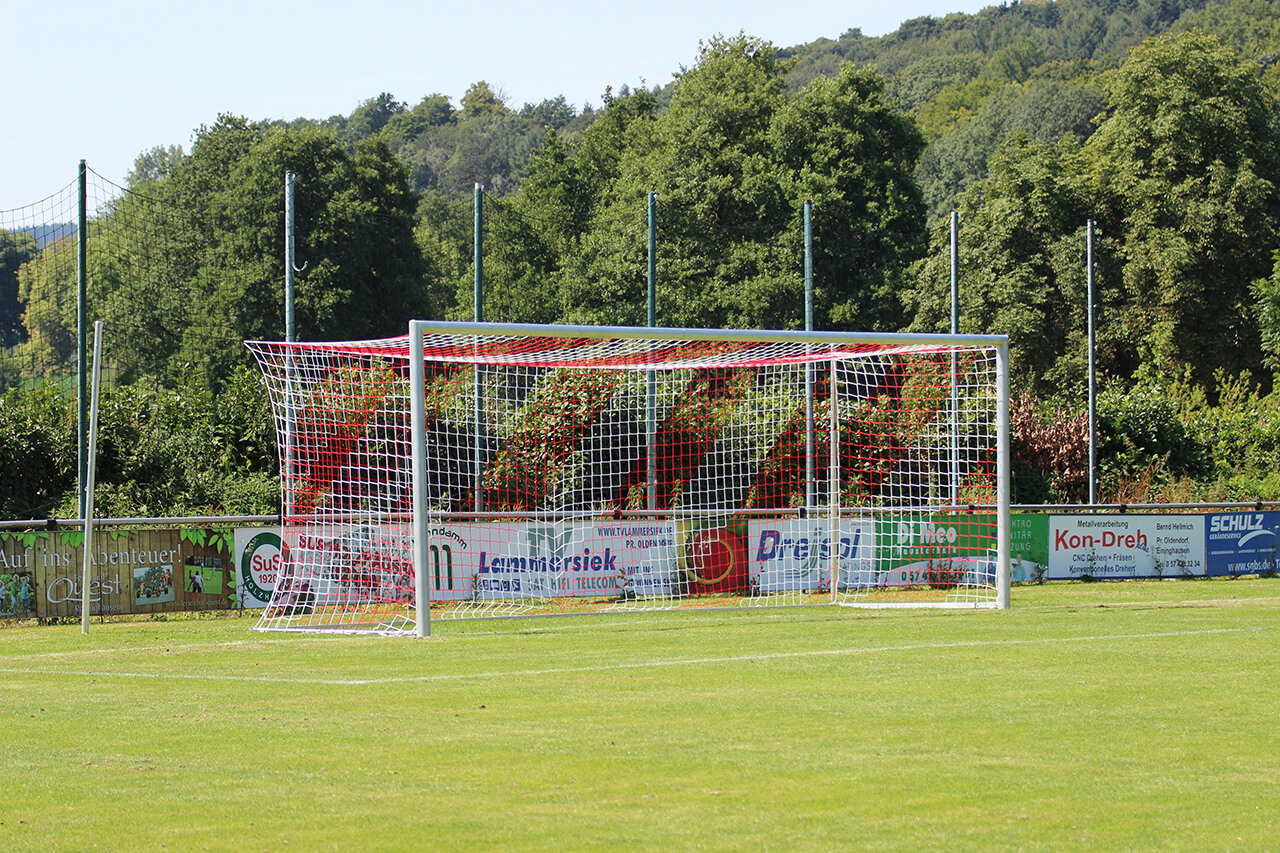 Football goal - Bundesliga - 7.32 x 2.44 m - free net suspension