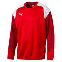 PUMA Esito 4 Training Sweat