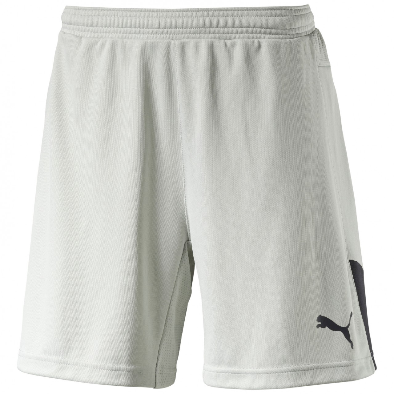 PUMA TW-Short Stadium