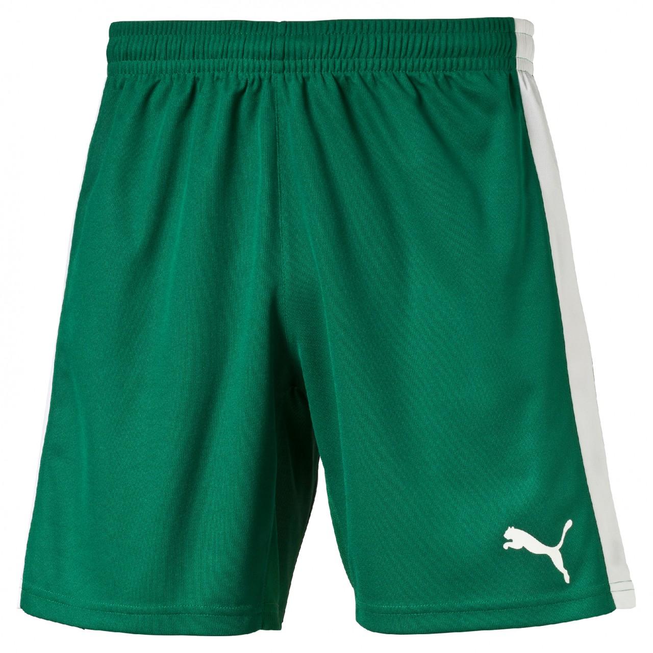 PUMA Indoor Court Shorts