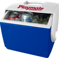 Eiskoffer - Playmate 6,6 l