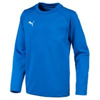 PUMA LIGA Training Sweat Jr
