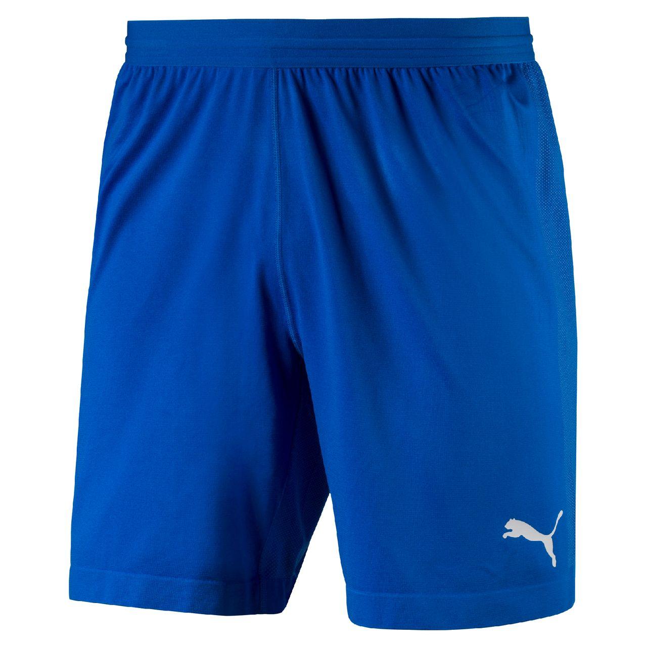 PUMA FINAL evoKNIT Shorts