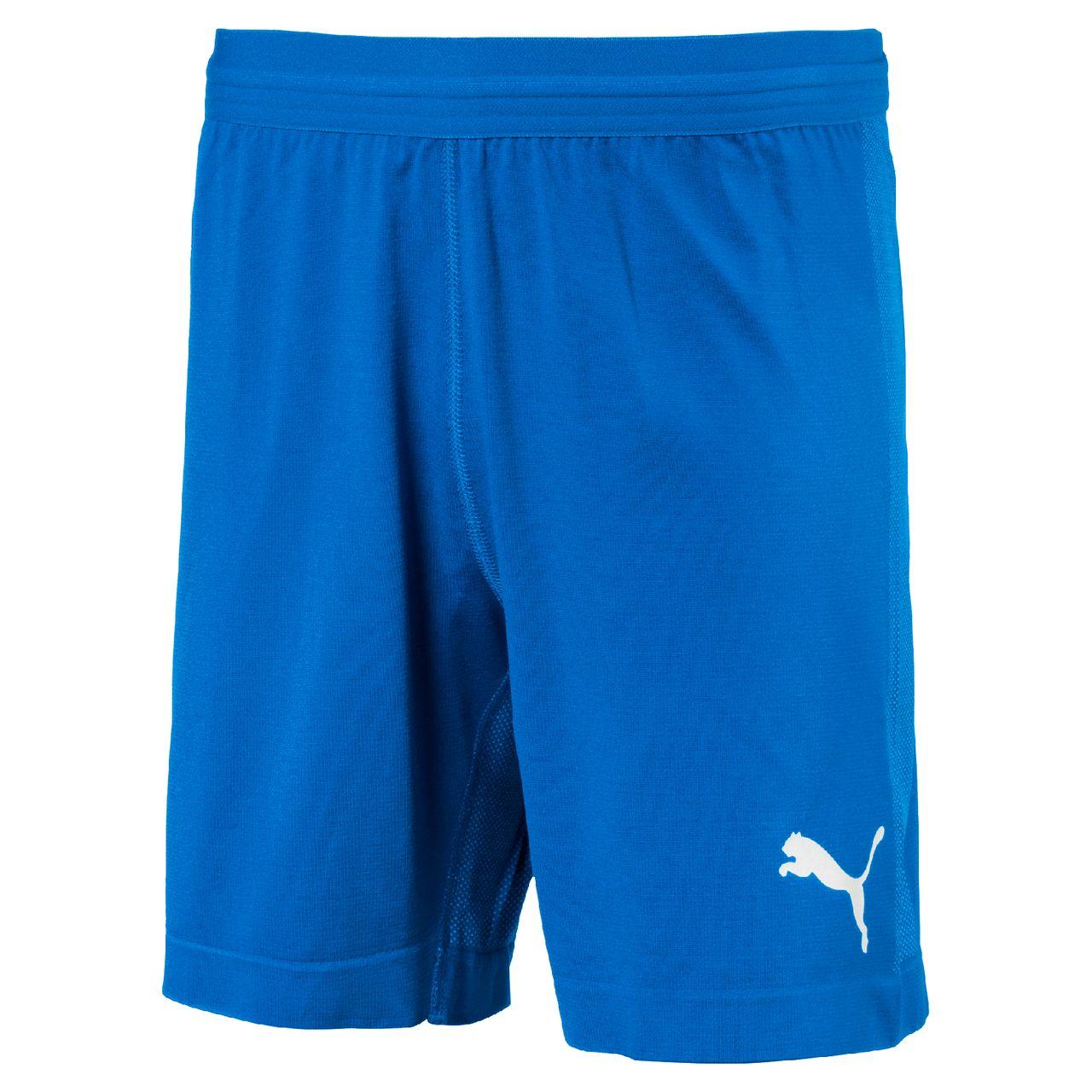 PUMA FINAL evoKNIT Shorts Jr