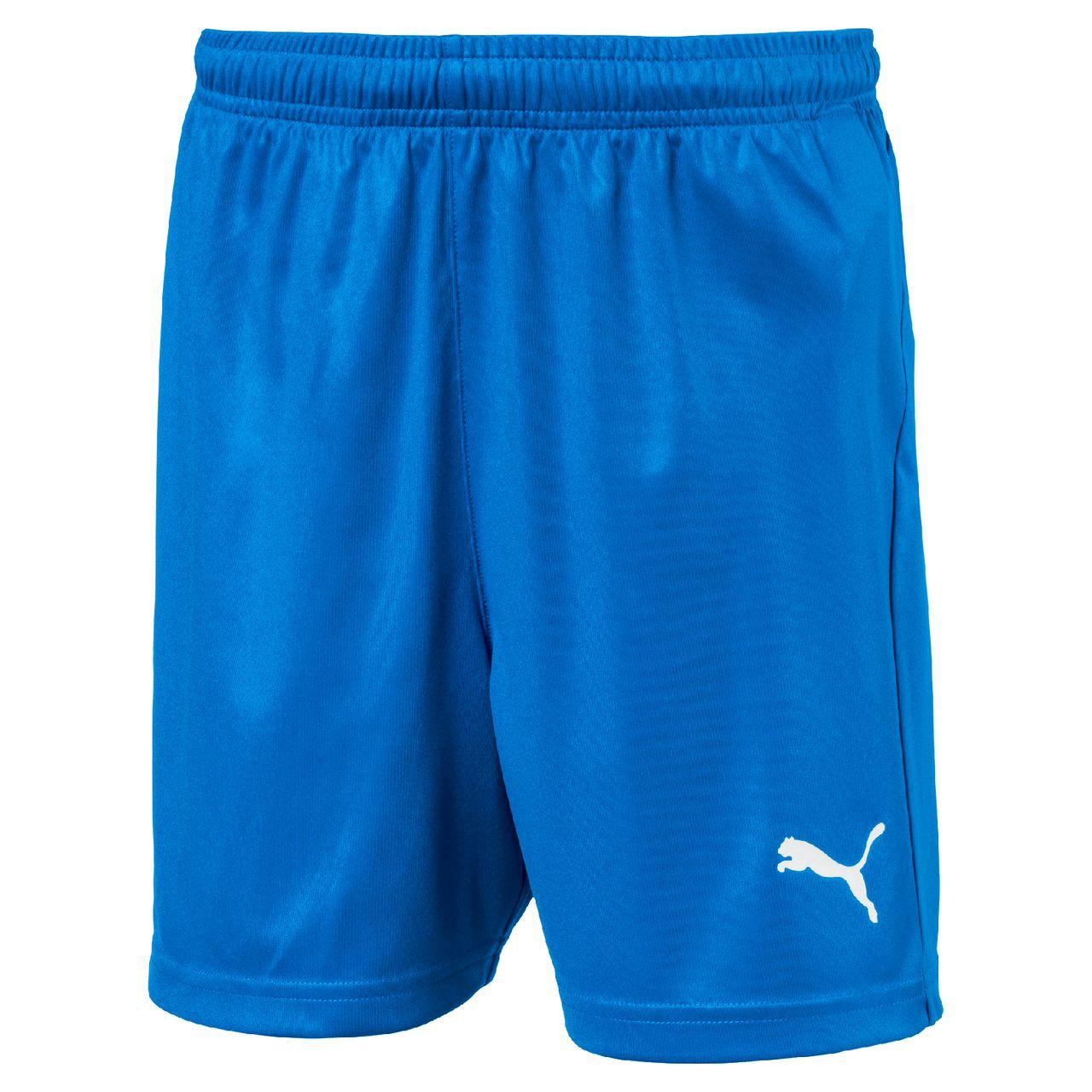 PUMA LIGA Shorts Core w Brief Jr