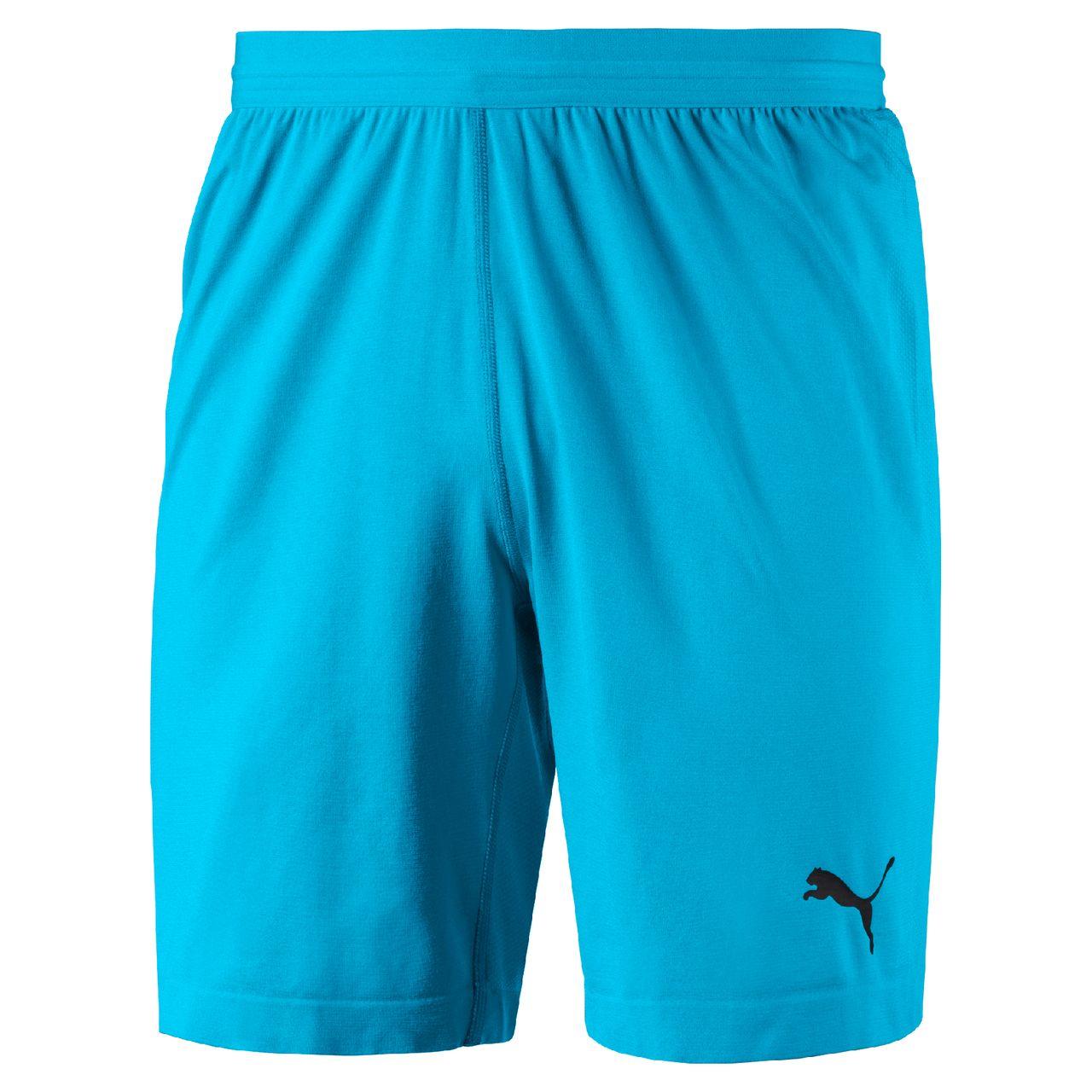 PUMA FINAL GK Shorts