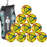 10 x erima play and training ball Hybrid Indoor incl. ball bag