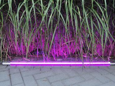 LED Leuchtstab 10 W 63 cm IP-44 Blendschutz Violet -#9652 – Bild 2