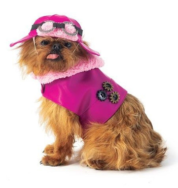 Schnittmuster, Hundecape, Hundemütze, Hundhut, Haustierbekleidung,  – Bild 1