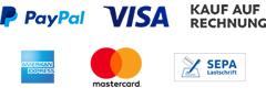 Paypal Plus Grafik