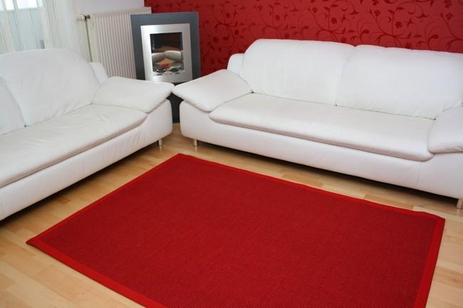 Astra Sisal Teppich Rot mit Stoffbordüre #011  Muster Bild 1