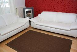 Sisal Teppich Manaus mit Fleckschutz | Dunkelbraun mit Stoffbordüre #064