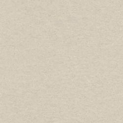 Linoleum Tarkett Veneto xf 2,0 mm | 793 Grey  Detail