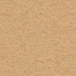 Linoleum Tarkett Veneto xf 2,0 mm | 679 Cork Detail
