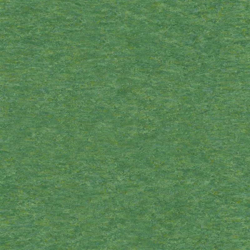 Linoleum Tarkett Veneto xf 2,5 mm | 650 Grass