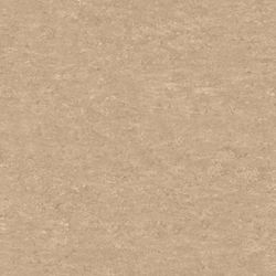 Linoleum Tarkett Veneto xf 2,5 mm | 625 Silk
