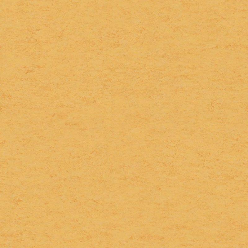 Linoleum Tarkett Veneto xf 612 Corn