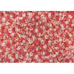Fussmatte wash+dry Decor Punilla red 140x200 cm