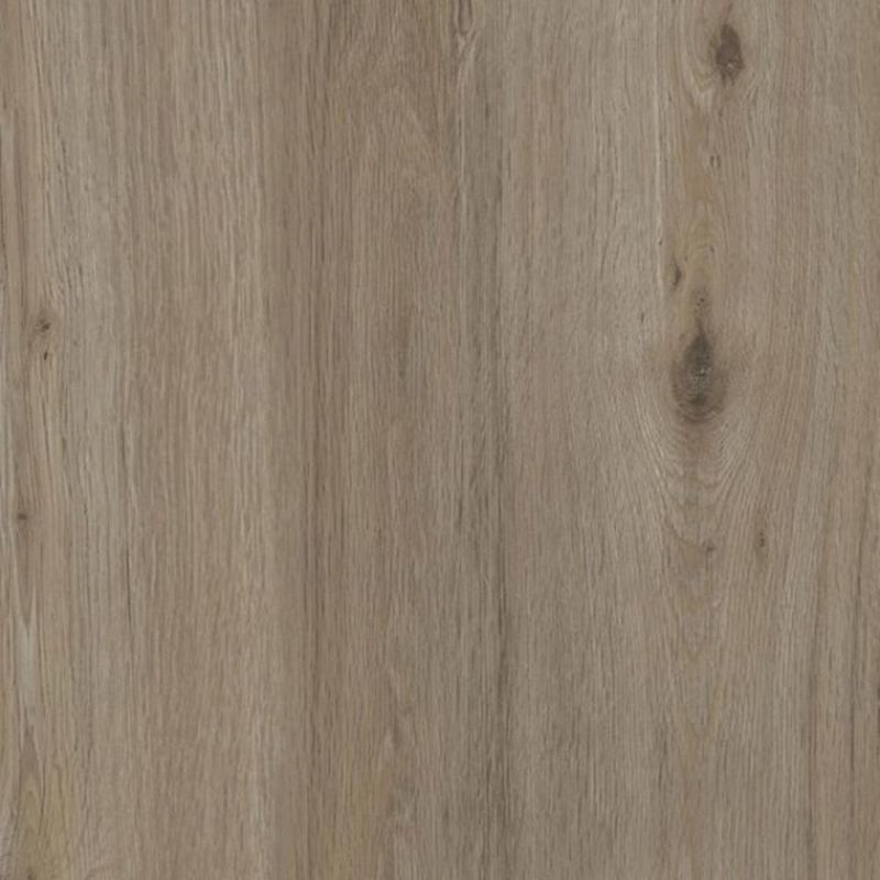 Tarkett Sockelleiste Soft Oak Light Beige