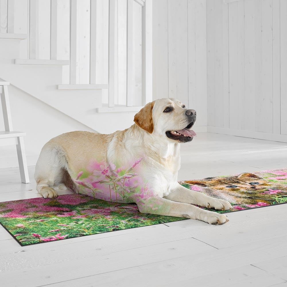 fussmatte wash dry design kitty 60x180 cm fu matten. Black Bedroom Furniture Sets. Home Design Ideas