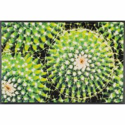 Fussmatte wash and dry Design Spiny Green 50x75 cm