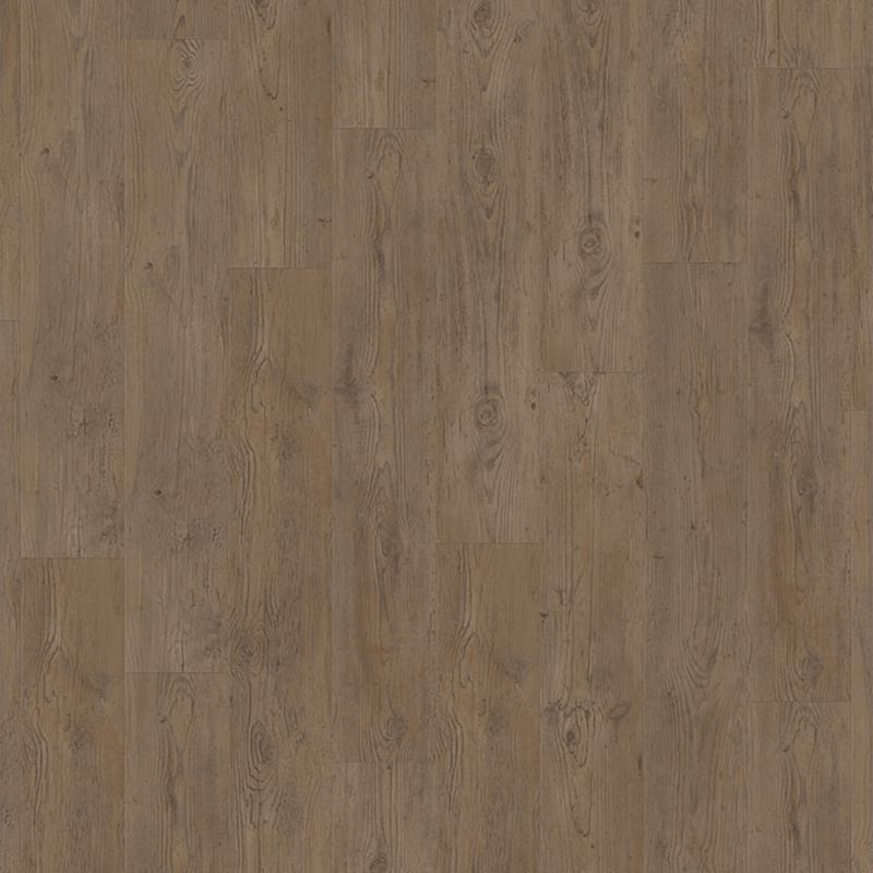 Tarkett Sockelleiste | Legacy Pine Brown 60x10x2020 mm
