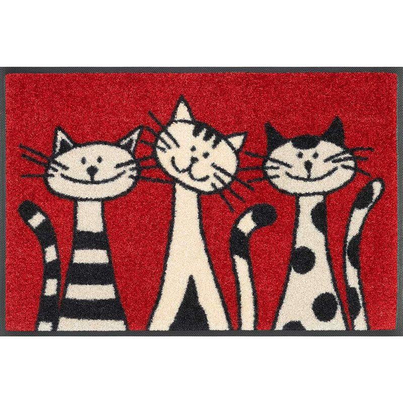 Fussmatte wash and dry Design Three Cats 40x60 cm