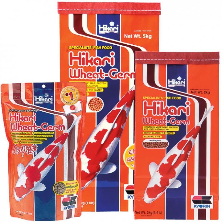 HIKARI® Wheat Germ Japanisches Koifutter