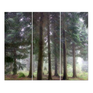 Foggy Forest – Bild 1