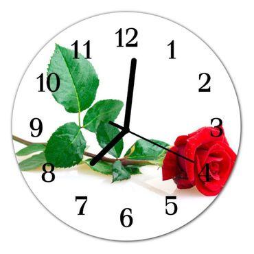 Rose rot – Bild 2