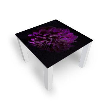 Violett Dahlie – Bild 2